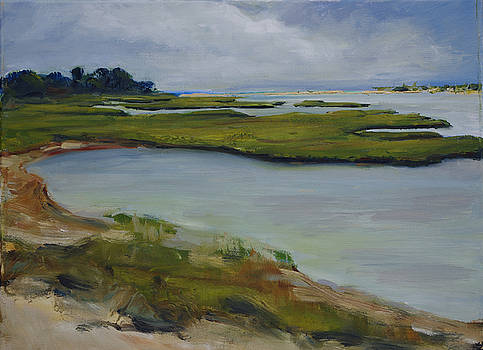 Martha's Vineyard Marsh by James Reynolds