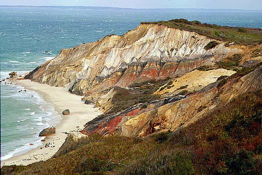 Marthas Vinyard Ocean Cliff by Linda Drown