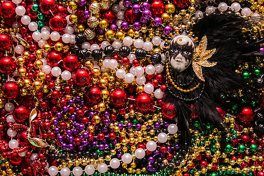Mardi Gras in Red Mask Right by Diana Marcoux
