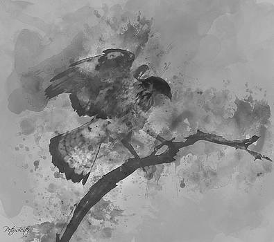Martial Eagle by Petrus Bester