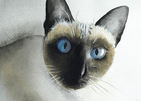 Mary Cat by Lynn Hansen