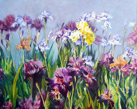Mary Ellen's Irises by Jill Brabant
