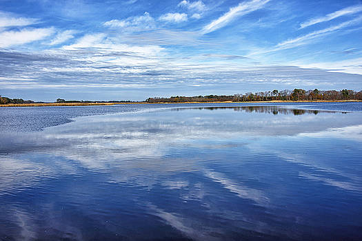 Maryland - Blackwater National Wildlife Refuge by Brendan Reals