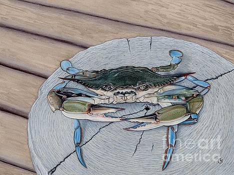 Maryland Blue Crab - the Escapee by Sherry Goeben