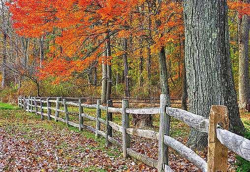 Maryland Country Roads - Autumn Colorfest No. 12 - Eylers Valley Catoctin Mountains Frederick County by Michael Mazaika