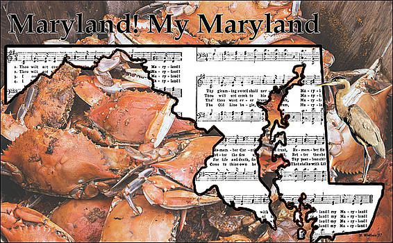 Maryland, My Maryland by Brian Wallace