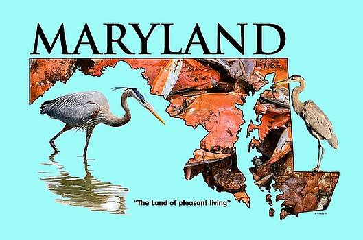 Maryland - The Land Of Pleasant Living by Brian Wallace