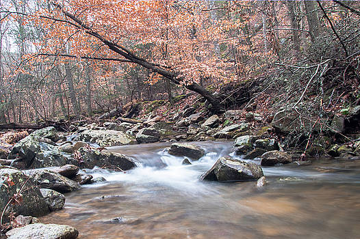 Mary's Creek by Keith Bowen