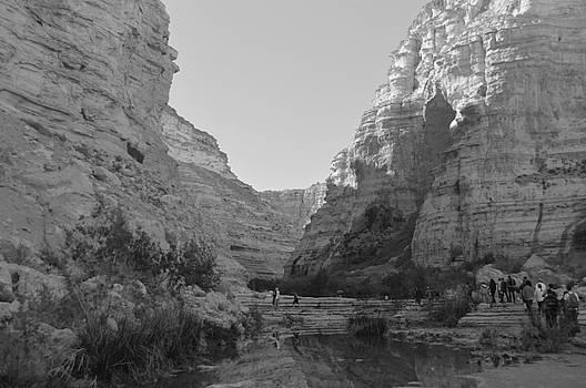 Masada by Alexander Mandelstam
