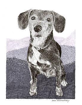 Jack Pumphrey - Masie just a puppy at heart