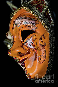 Mask Of Music by Steve Purnell