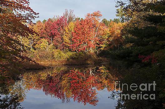 Bob Phillips - Massachusetts Color