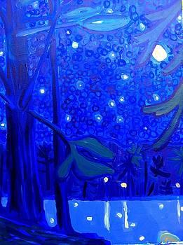Massapoag Nocturne by Debra Bretton Robinson
