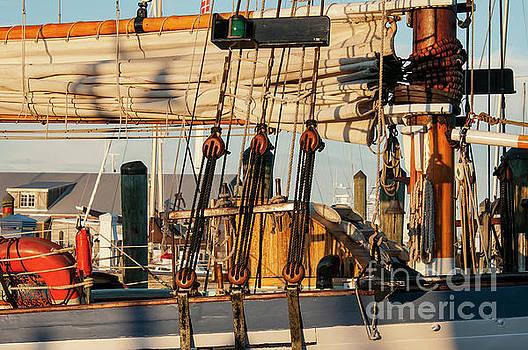 Bob Phillips - Mast and Sail