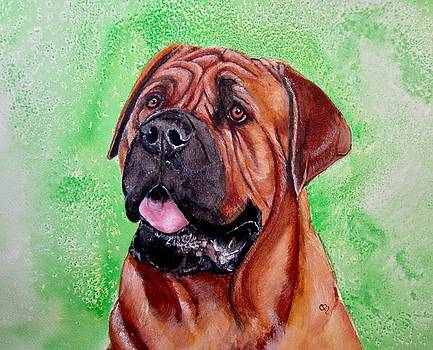 Mastiff by Carol Blackhurst