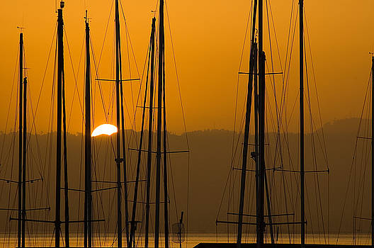 Mick Burkey - Masts at Dawn
