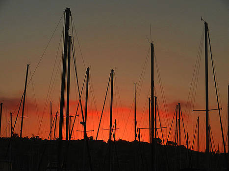 Masts at Sunset by Kelly E Schultz