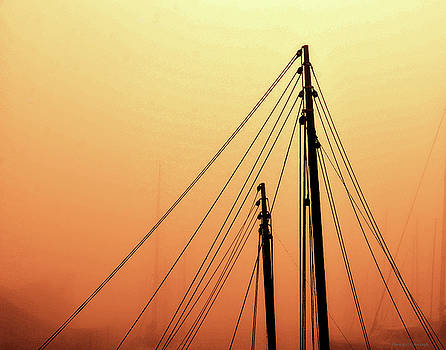 Masts by Coleman Mattingly