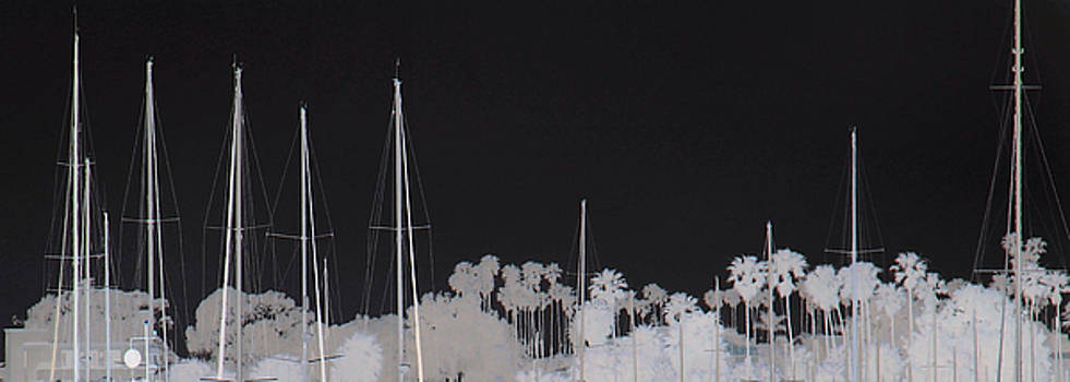 Masts by Dana Patterson