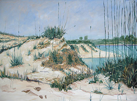 Matanzas Inlet Midday by D T LaVercombe