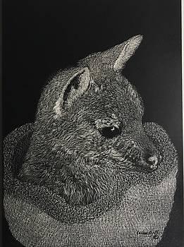 Matilda by Wendy Brunell