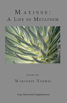 Don Mitchell - Matisse  A Life in Metaphor book cover