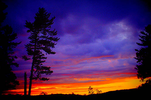 Maudslay Sunset 2 by Suzanne DeGeorge