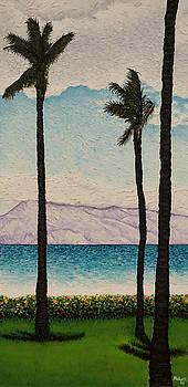 Joe Michelli - Maui 1