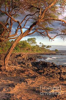 Maui beach by Bryan Keil