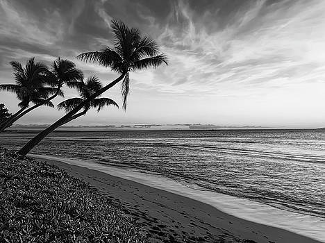 Daniel Hagerman - MAUI FOOTPRINTS on the BEACH