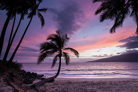 Maui Moments by James Roemmling