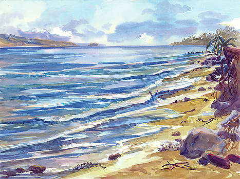 Maui Morning Light by Ron Libbrecht