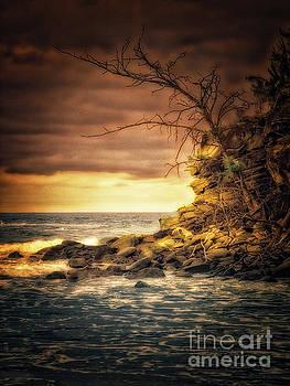 Maui Ocean Point by Chuck Caramella