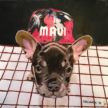 Maui Puppy by Gary Springer