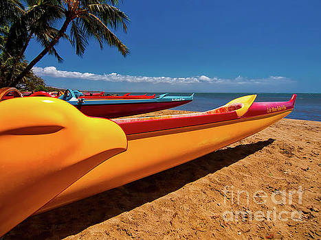 Maui Sugar Beach  by Tom Jelen