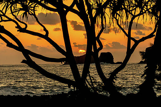 Puget Exposure - Maui Sunrise