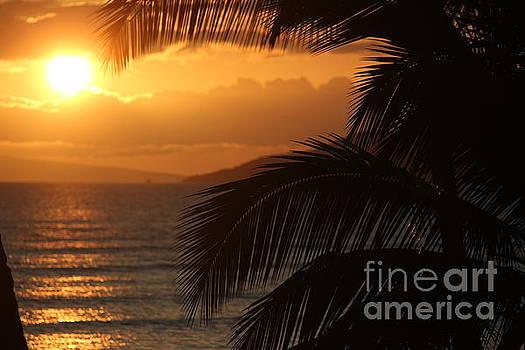 Wilko Van de Kamp - Maui Sunset