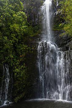 Maui Waterfall by Chuck Jason