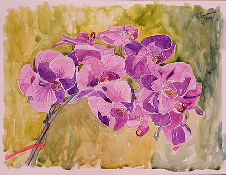 Mauve Orhidee by Ciocan Tudor-cosmin