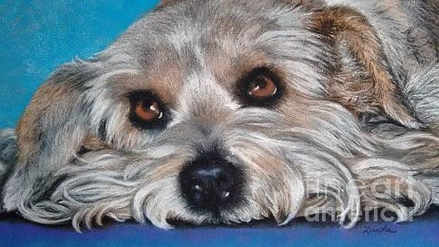 Poor Puppy #2 by Linda Eversole