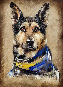 Max The Military Dog by Daliana Pacuraru