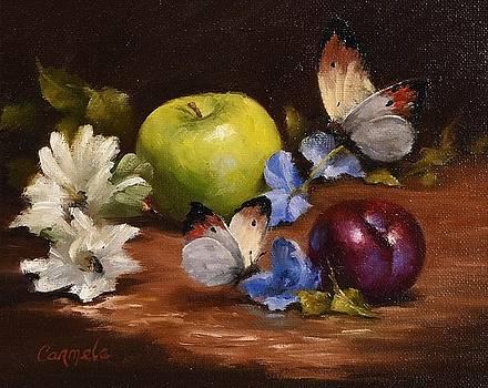 May Butterflies by Carmela Brennan
