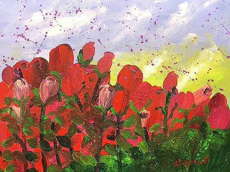 May Roses by Christina Schott