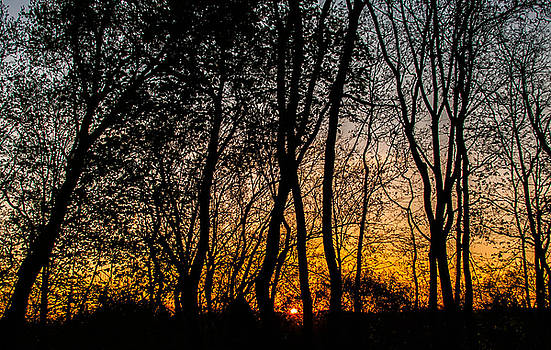 May Sunrise by Kathleen McGinley