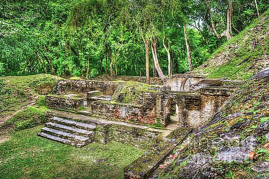 Mayan Ruin Steps to Kings Chambers by David Zanzinger