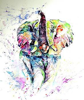 Mayestic colorful elephant playing light by Kovacs Anna Brigitta
