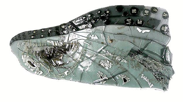 Mayfly Wing  by Sarah King