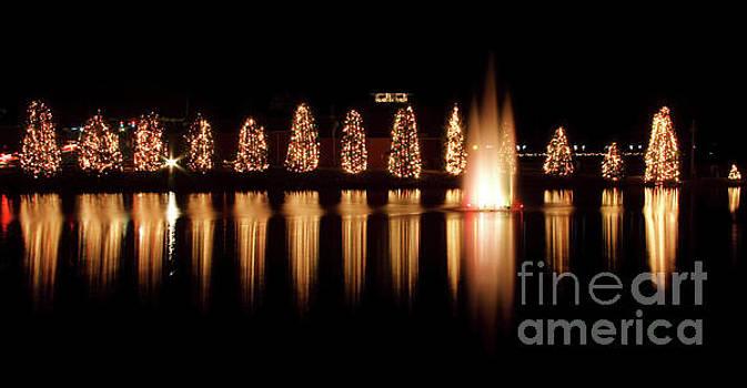 Jill Lang - McAdenville Christmas Lights