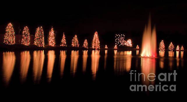 Jill Lang - McAdenville Christmas Tree Lights