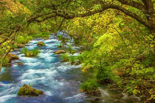 McArthur-Burney Falls Creek Painterly by Bill Gallagher